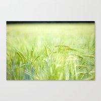 Grainy Green Canvas Print