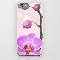 Orchid Tree (textured) iPhone 6 Slim Case