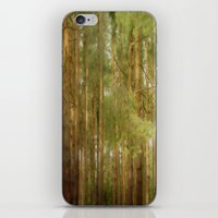 July Forest iPhone & iPod Skin