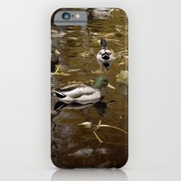 iPhone & iPod Case featuring Ducks by Devin Marie