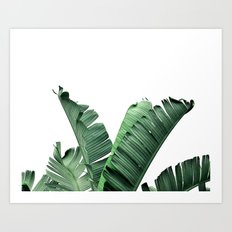 TROPIC - BANANA LEAF Art Print