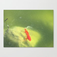 Life under the Ice Canvas Print
