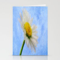 Daisy Texture 2 Stationery Cards