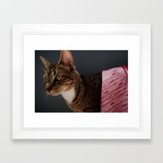 Couture Cat Framed Art Print