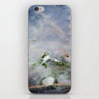 frozen lakes iPhone & iPod Skin