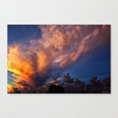 Winged Sunset Canvas Print