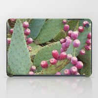 Desert Fruit iPad Case