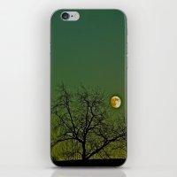 Tangled Tree Moon iPhone & iPod Skin
