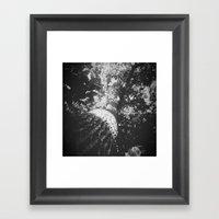 Tree I Framed Art Print