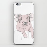 Piggywig iPhone & iPod Skin