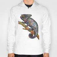 Chameleon(4) Hoody