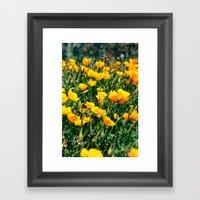 Golden State Framed Art Print