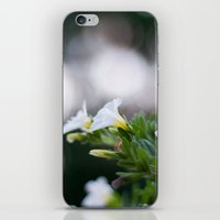 Party Flowers iPhone & iPod Skin