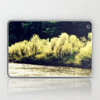 Sun-Kissed Muddy Water Laptop & iPad Skin