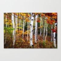 Acadia Fall Color Canvas Print