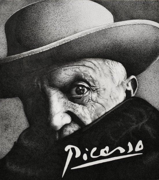 picasso Canvas Print