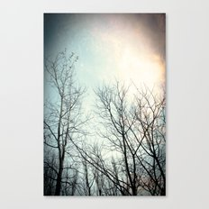 autumn II Canvas Print
