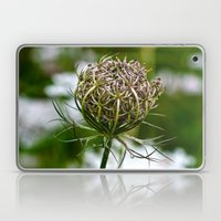 Wild Carrot Laptop & iPad Skin