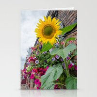Sunflower In Bloom Stationery Cards
