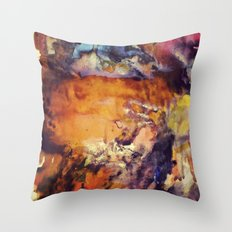 1/3 Throw Pillow