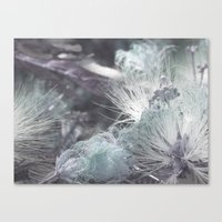 Yielding to Winter's breath Canvas Print