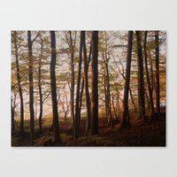 Autumn In The Woods 2 Canvas Print