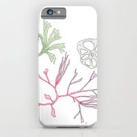 iPhone & iPod Case featuring Seaweed and Lotus Root by Bonnie Durham
