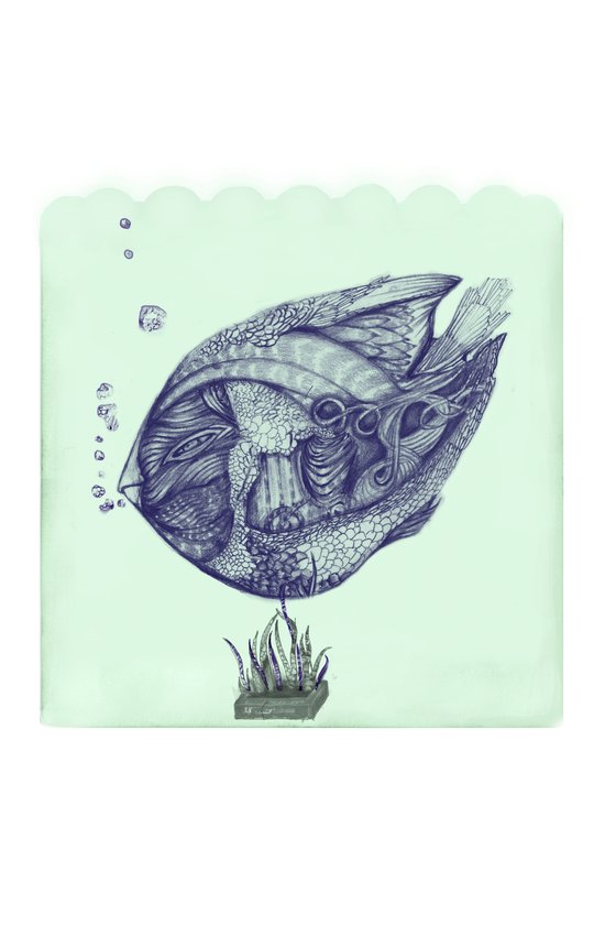 Floating Fish Art Print