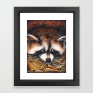 Framed Art Print featuring Raccoon by Patrizia Ambrosini