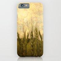 Light in the Grasses iPhone 6 Slim Case