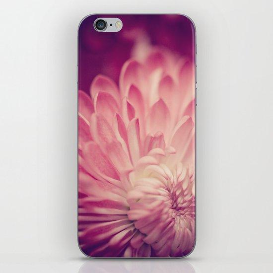 layers of pink iPhone & iPod Skin