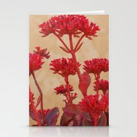 Rustic Flowers Stationery Cards