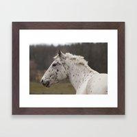 Xerox - NNEP Ottawa, ON Framed Art Print