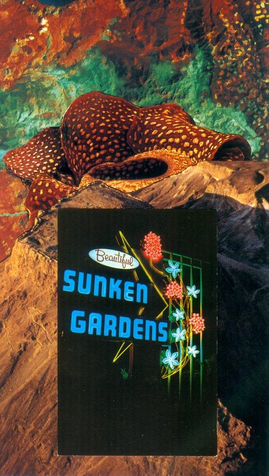 Sunken Gardens Art Print