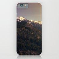 Sequoia National Park iPhone 6 Slim Case