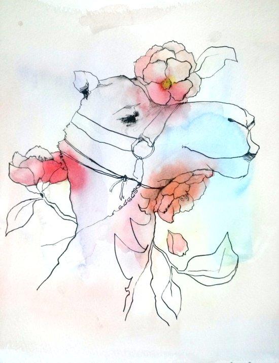 A camel in camellia Art Print