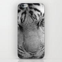 Le Tigre Pendant Sa Sies… iPhone & iPod Skin