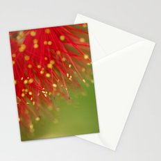 Fireworks of the Callistemon 30-13 Stationery Cards