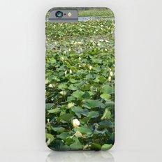 Amana Lilly Pond iPhone 6 Slim Case