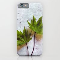 couple iPhone & iPod Cases featuring couple by Claudia Drossert