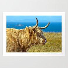 Highland Beauty Art Print