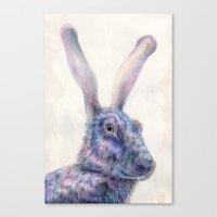 Black Rabbit Canvas Print