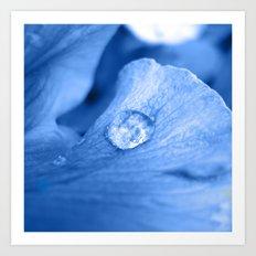 water pearl Art Print