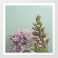 Floral Variations No. 3 Art Print