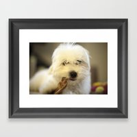 Moriarty & The Bully Stick Framed Art Print
