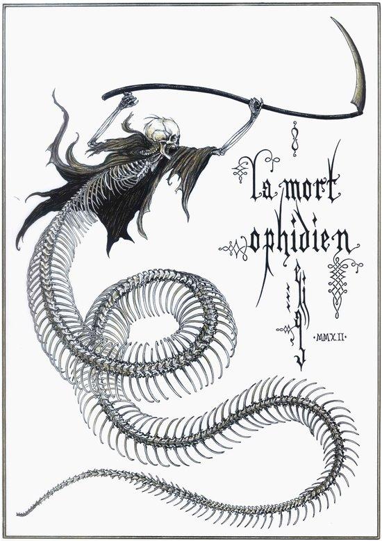 Ophidian Death Art Print