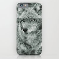 iPhone & iPod Case featuring Focus by goguen