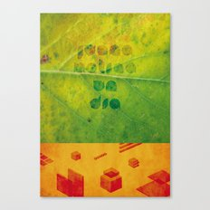 Un Dia Canvas Print