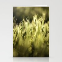 Summer Grass Portrait Stationery Cards