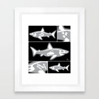 Shark X-Ray Framed Art Print
